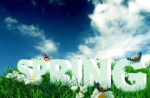 Why Spring is an important part of your fitness strategy